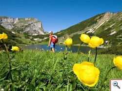 Sommer im Alpbachtal